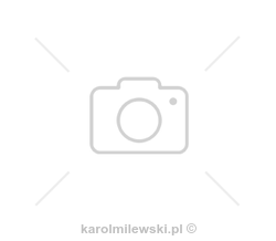 Mirror in black frame, high gloss or matt